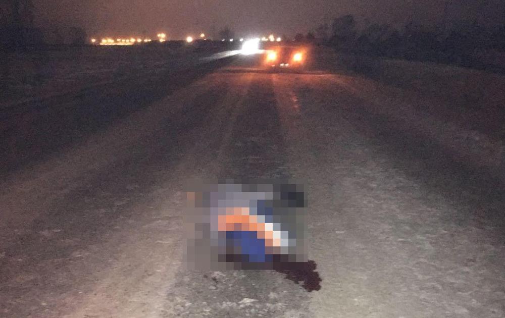массивная водитель сбил пешехода на трассе м7 образ удовлетворил
